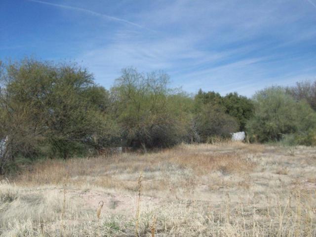 1237 N Alamo Avenue #1239, Tucson, AZ 85712 (#21808182) :: The Josh Berkley Team