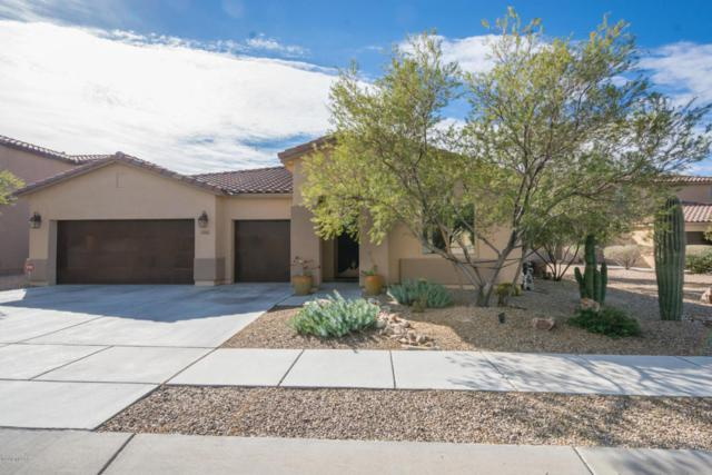 4361 W Windsor Ranch Place, Marana, AZ 85658 (#21808185) :: My Home Group - Tucson