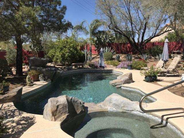 11481 N Copper Creek Drive, Oro Valley, AZ 85737 (#21808274) :: Long Realty Company