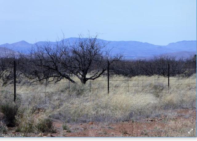 40.28 acre Hwy 181 #4, Pearce, AZ 85625 (#21808714) :: Long Realty Company