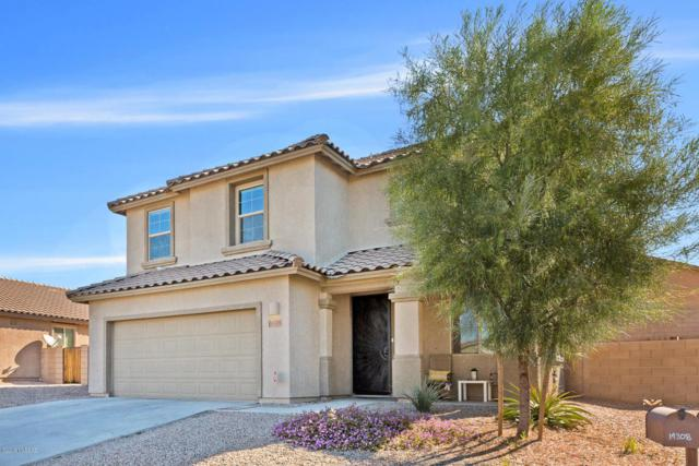 14308 N Fragile Clay Avenue, Marana, AZ 85658 (#21808749) :: The Josh Berkley Team