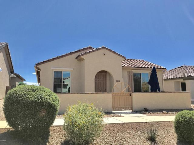 14019 E Cariole Street, Vail, AZ 85641 (#21808870) :: The Josh Berkley Team