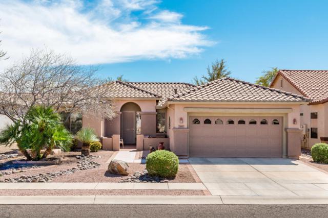 7697 W Desert Cactus Way, Tucson, AZ 85743 (#21809294) :: The Josh Berkley Team