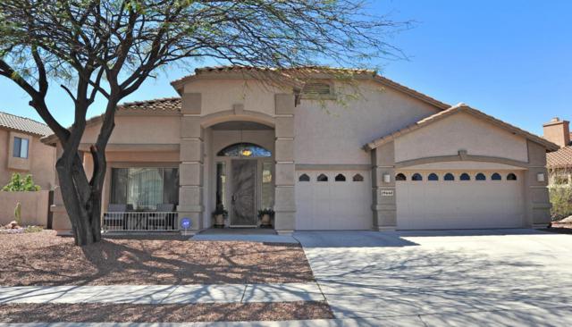 39648 S Mountain Shadow Drive, Tucson, AZ 85739 (#21809312) :: The Josh Berkley Team