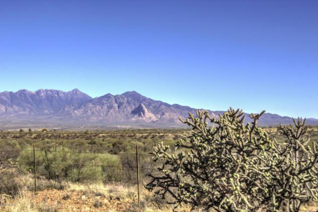 4220 W Calle Dos #76, Green Valley, AZ 85622 (#21809388) :: RJ Homes Team