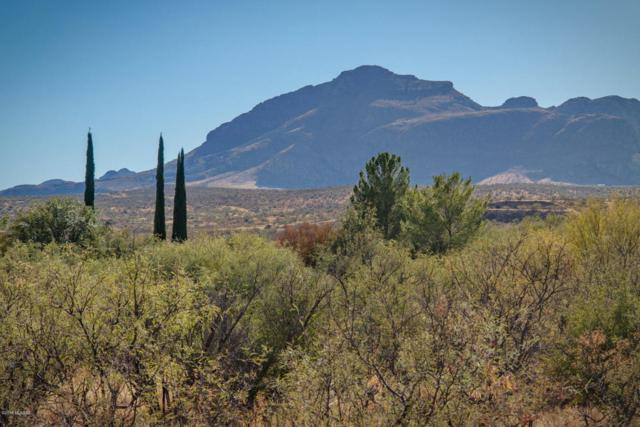 TBD Saddle Horn #10, Tubac, AZ 85646 (#21809550) :: Long Realty Company