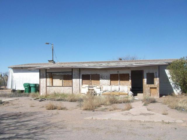 10261 N Volk Avenue, Marana, AZ 85653 (#21809598) :: Gateway Partners at Realty Executives Tucson Elite