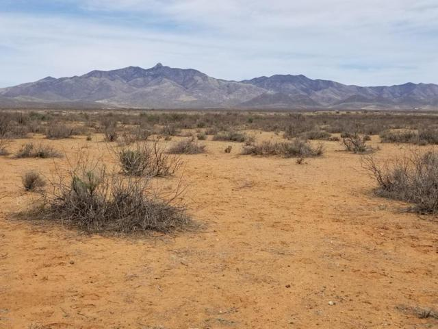 Trail Blazer Road Tbd, Willcox, AZ 85643 (#21809809) :: Long Realty Company