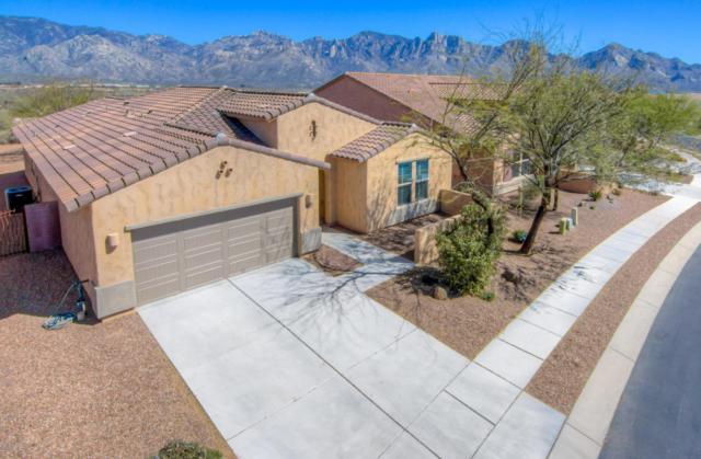 12978 N Via Vista Del Pasado, Oro Valley, AZ 85755 (#21810042) :: Long Realty Company
