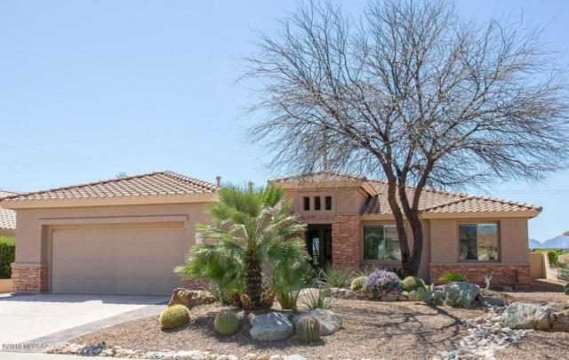 61835 E Border Rock Road, Tucson, AZ 85739 (#21810046) :: Long Realty Company