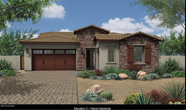 13289 N Rainbow Cactus Court, Tucson, AZ 85755 (#21810140) :: Long Realty - The Vallee Gold Team