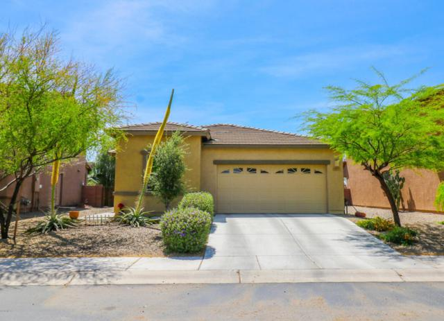 12039 W Formosa Lane, Marana, AZ 85653 (#21810359) :: Long Realty Company