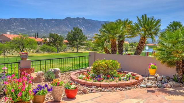 37285 S Canyon View Drive, Tucson, AZ 85739 (#21810377) :: Long Realty Company
