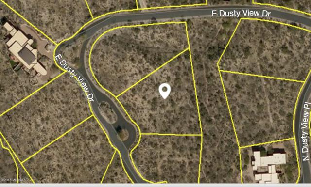 234 E Dusty View Drive #102, Oro Valley, AZ 85755 (#21810398) :: Long Realty - The Vallee Gold Team