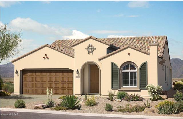 7195 W River Trail, Marana, AZ 85658 (#21810470) :: Long Luxury Team - Long Realty Company