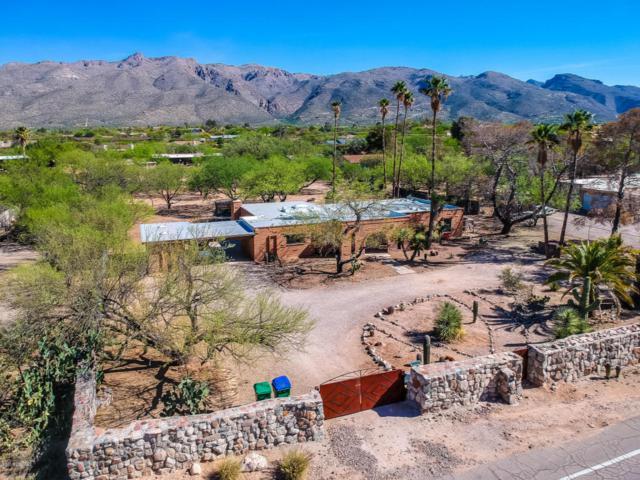 11141 E Limberlost Road, Tucson, AZ 85749 (#21810495) :: Long Realty Company