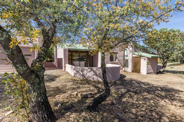 50 S Casas Arroyo Road, Sonoita, AZ 85637 (#21810533) :: Long Realty Company