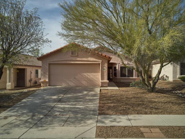 5562 W Peaceful Dove Place, Marana, AZ 85658 (#21810557) :: Long Luxury Team - Long Realty Company