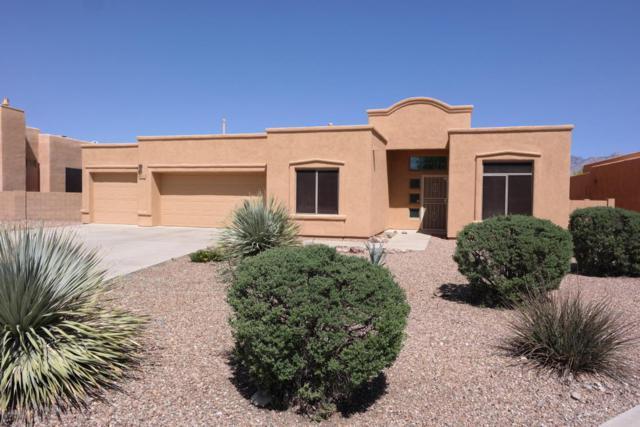 1331 N Golden Palomino Place, Tucson, AZ 85715 (#21810614) :: The Josh Berkley Team