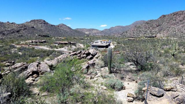 13662 N Hidden Rock Place #246, Marana, AZ 85658 (#21810863) :: Long Luxury Team - Long Realty Company