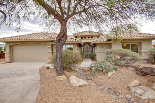 10793 E Grass Spring Place, Tucson, AZ 85748 (#21811057) :: The Josh Berkley Team