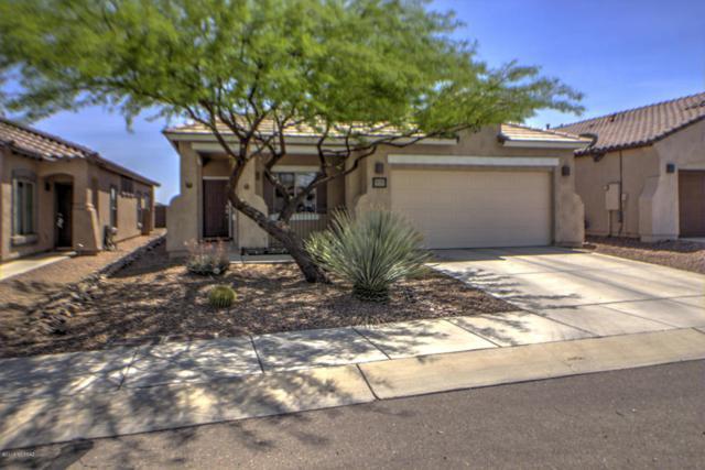 14455 S Avenida Castano, Sahuarita, AZ 85629 (#21811075) :: Long Realty Company