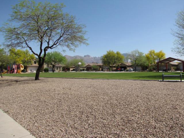 1630 W Blue Horizon Street, Tucson, AZ 85704 (#21811182) :: Long Realty - The Vallee Gold Team