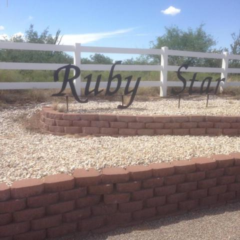 Ruby Star Airpark, Sahuarita, AZ 85629 (#21811198) :: Long Realty Company