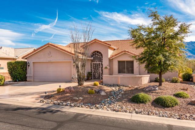 Address Not Published, Tucson, AZ 85739 (#21811202) :: My Home Group - Tucson