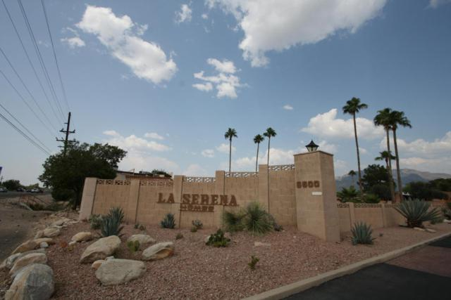 179 W Lillian Lane, Tucson, AZ 85704 (#21811249) :: Long Luxury Team - Long Realty Company