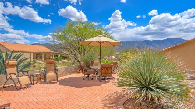 65214 E Rose Ridge Court, Tucson, AZ 85739 (#21811262) :: My Home Group - Tucson