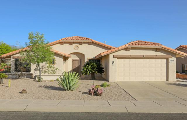 14562 N Alamo Canyon Drive, Oro Valley, AZ 85755 (#21811390) :: The KMS Team