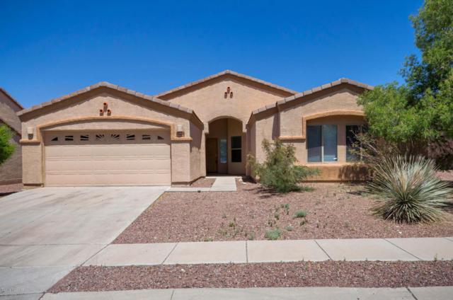 10171 E Corte Madera Fina, Tucson, AZ 85730 (#21811416) :: The KMS Team