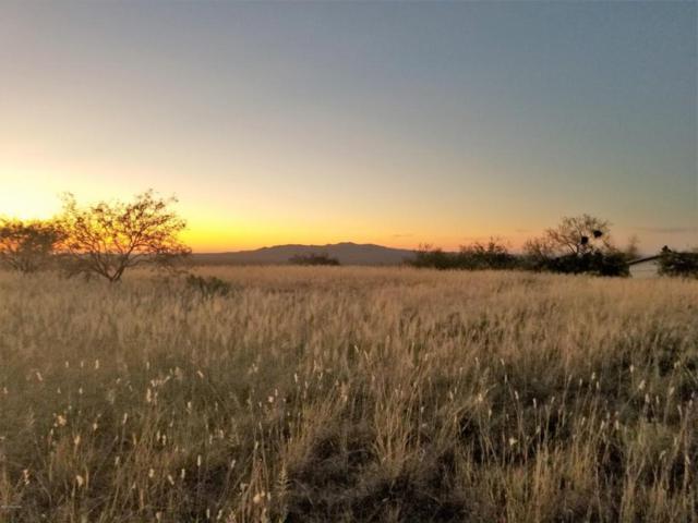 TBD New Moon, Oracle, AZ 85623 (#21811449) :: Gateway Partners at Realty Executives Tucson Elite