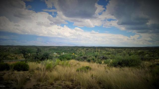 4909 E Mt Lemmon Highway C&D, Oracle, AZ 85623 (#21811452) :: Gateway Partners at Realty Executives Tucson Elite
