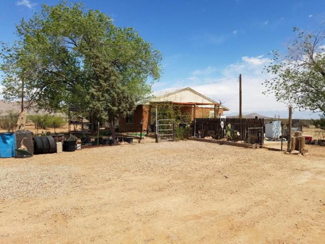 3149 E Fawn Ranch Road, Pearce, AZ 85625 (#21811474) :: Gateway Partners at Realty Executives Tucson Elite
