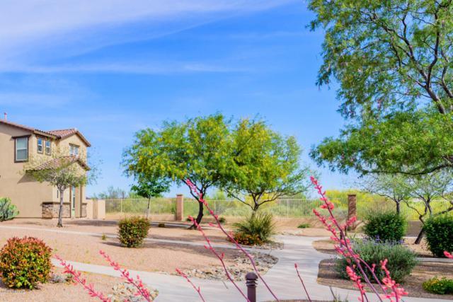620 W Paseo Celestial, Sahuarita, AZ 85629 (#21811521) :: Long Realty Company
