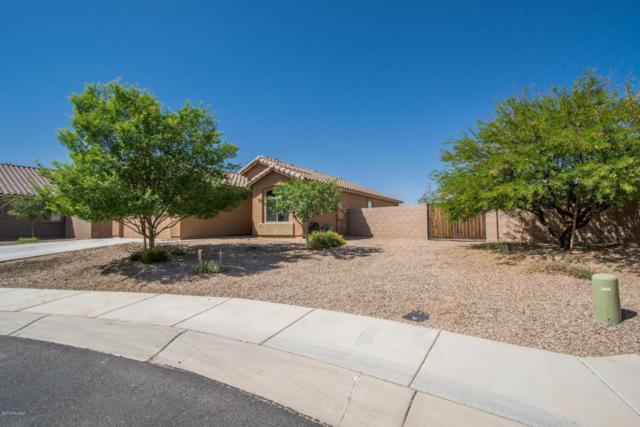 14387 N Arrowpoint Ash Ave, Marana, AZ 85658 (#21811527) :: Gateway Partners at Realty Executives Tucson Elite