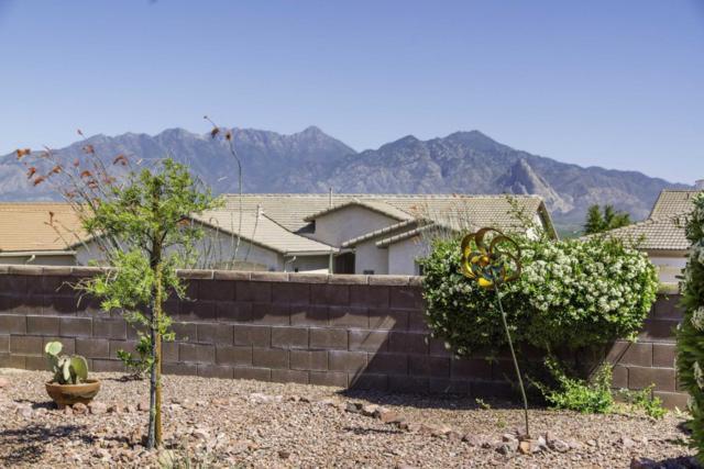 5103 S Avenida Sin Prisa, Green Valley, AZ 85622 (#21811577) :: Long Realty - The Vallee Gold Team