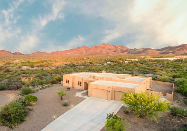 9442 E Purple Orchid Place, Corona de Tucson, AZ 85641 (#21811641) :: The KMS Team