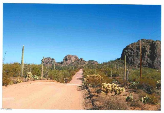 XX S Owl Head Ranch Road 40AC, Marana, AZ 85658 (#21811705) :: Gateway Partners at Realty Executives Tucson Elite