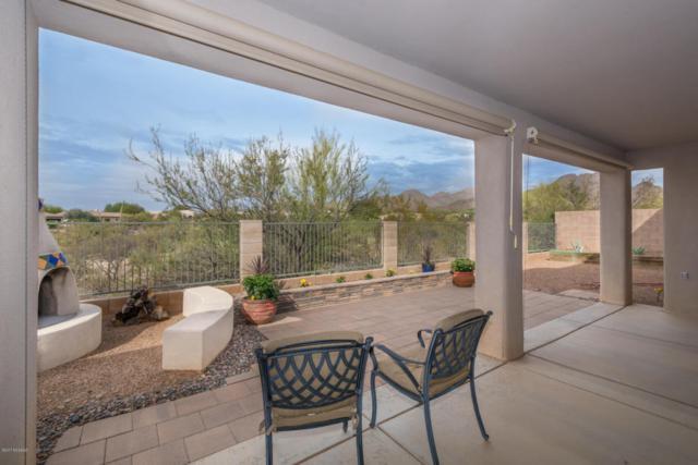12961 N High Hawk Drive, Marana, AZ 85658 (#21811713) :: Long Realty - The Vallee Gold Team