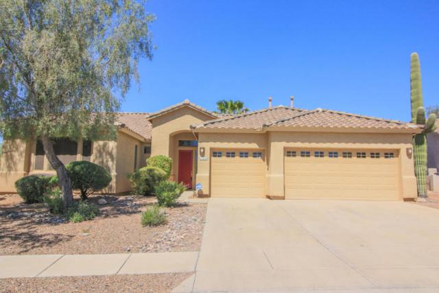 11635 N Ribbonwood Drive, Oro Valley, AZ 85737 (#21811730) :: Long Realty - The Vallee Gold Team