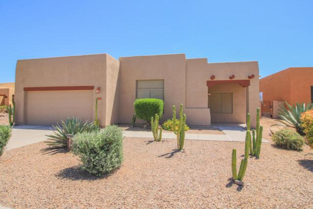 8146 N Painted Feather Drive, Tucson, AZ 85743 (#21811773) :: The Josh Berkley Team