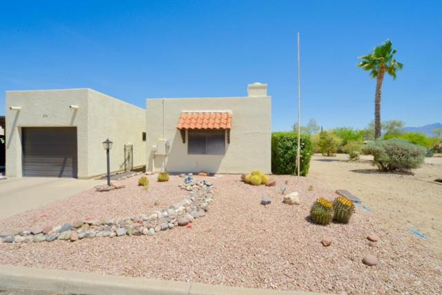 454 N Calle De Las Profetas, Green Valley, AZ 85614 (#21811834) :: RJ Homes Team