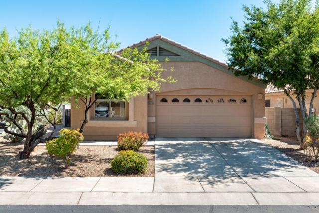 6670 E Cooperstown Drive, Tucson, AZ 85756 (#21811852) :: The Josh Berkley Team