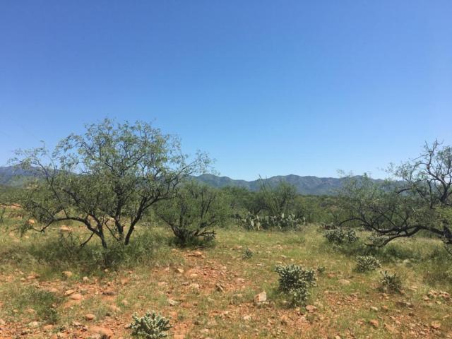 389 Camino Josefina C, Rio Rico, AZ 85648 (#21812120) :: The Josh Berkley Team
