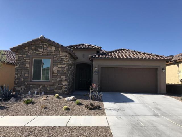 10716 E Winter Gold Drive, Tucson, AZ 85747 (#21812162) :: The Josh Berkley Team