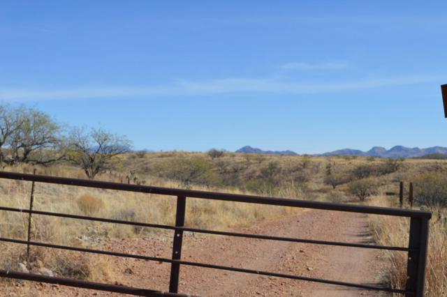 14580 W Crooked Sky Way #0, Arivaca, AZ 85601 (#21812239) :: Long Realty Company