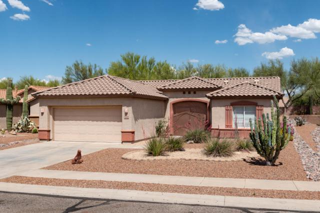 9350 N Cottage Garden Place, Tucson, AZ 85743 (#21812361) :: The Josh Berkley Team
